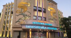 Taraporewala Aquarium in Mumbai