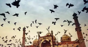 Make The Best Of Delhi Winter