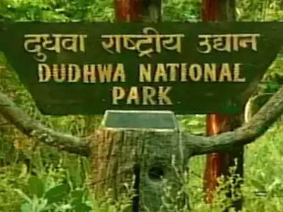 Wildlife Must Visit Dudhwa